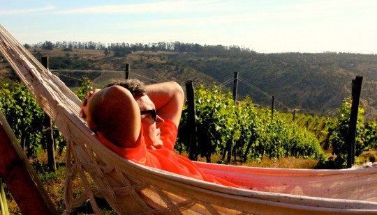 Pickett taking time out during his Wines of Chile trip