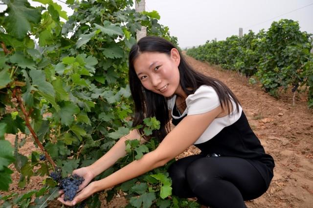Mrs. Liu Ning from Huailai Amethyst Manor Winery