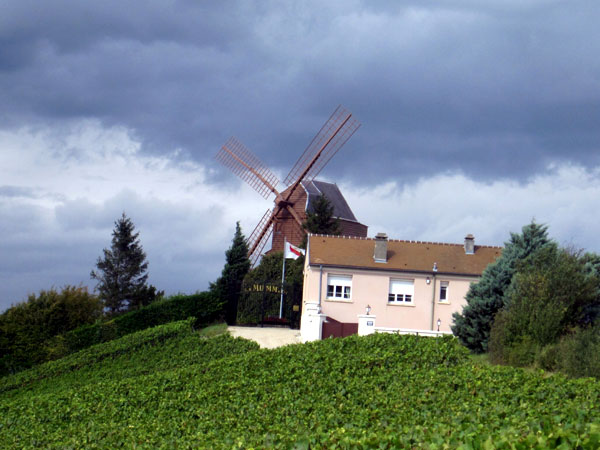 Champagne Mumm lost 15 hectares in Cramant to the storms