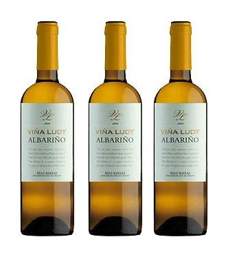 Viña Ludy Albariño 2012 scooped Best White Under £10