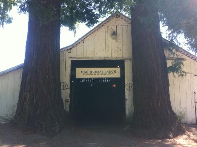 5 MacMurray Ranch Redwoods