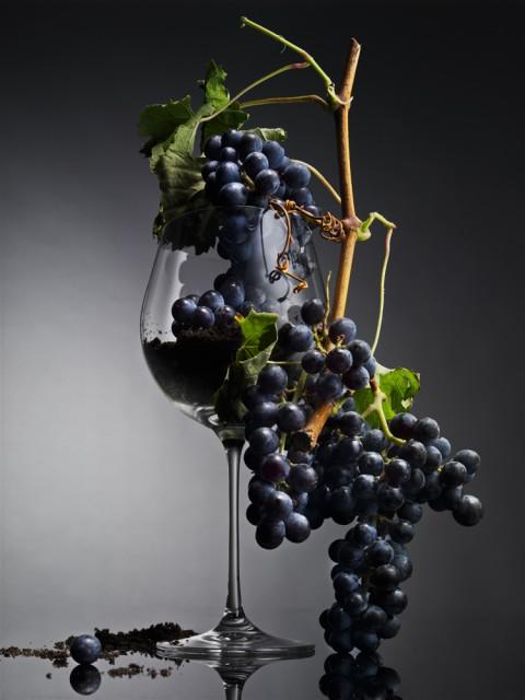 Prirodna vina