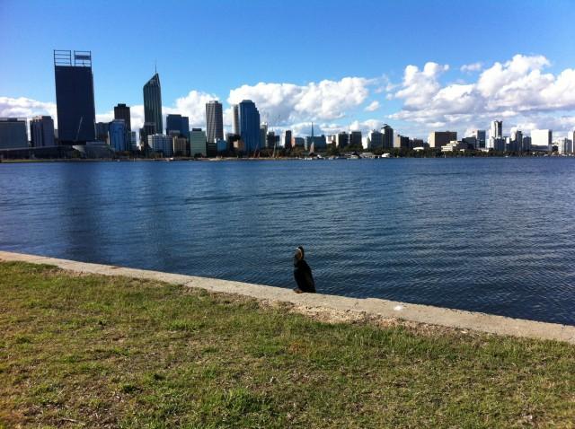 13. Perth