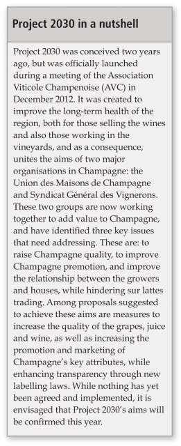 Champagne-Project-2013