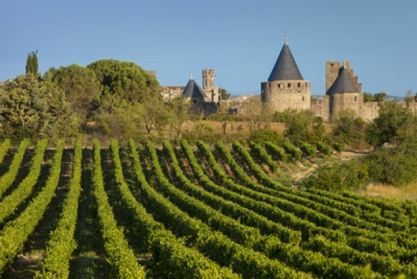 Sun shines on Languedoc-Roussillon