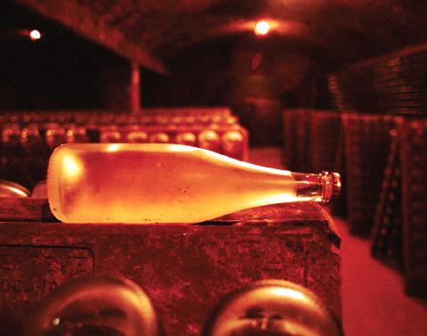 champagne bottle in cellar