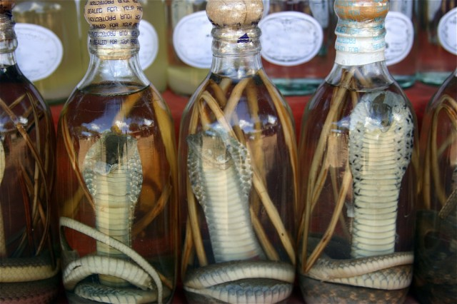 It's possible the snakes simply didn't fancy the idea of being bottled.
