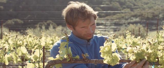 Winemaker Guillaume Fabre