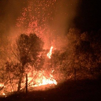 Fire has devasted the land around Kanonkop's estate. The winery has estimated a potential loss of 50 tonnes of grapes (Photo: Kanonkop)