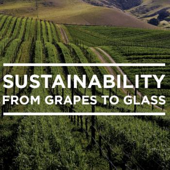 California sustainability report 2015