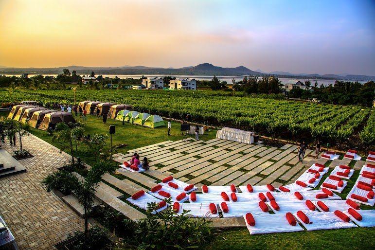 Soma Vineyards - India