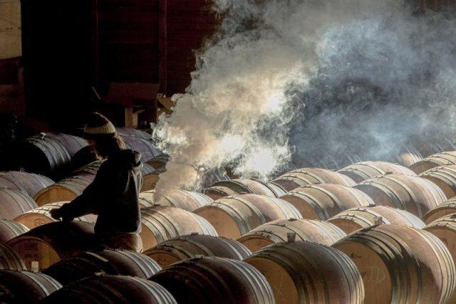robert_holmes_mayasara_winery