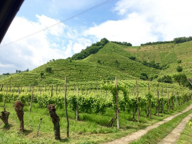 cartizze hill