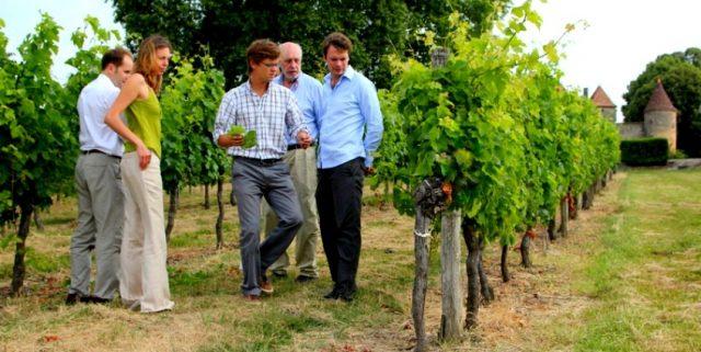 248_93_st_emilion_afternoon_wine_tour_2-848x425
