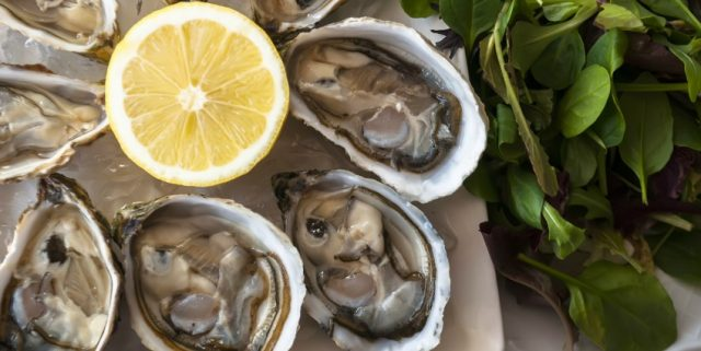 251_94_oysters-848x425