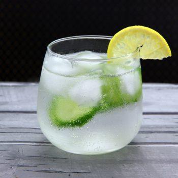 Make-Gin-and-Tonic-Step-12-Version-2