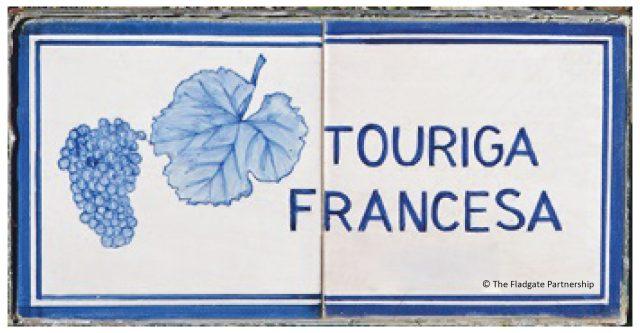 touriga-francesa-01