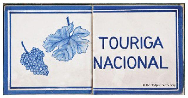touriga-nacional-01