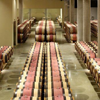 new_cellar_at_yad_hashmona-credit-elad-barmi