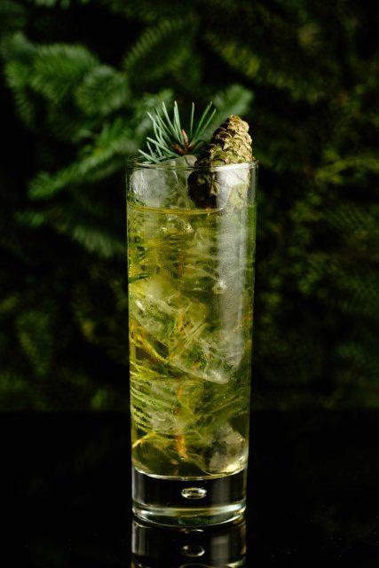 fir-tree-hopped-scotch-soda-copy