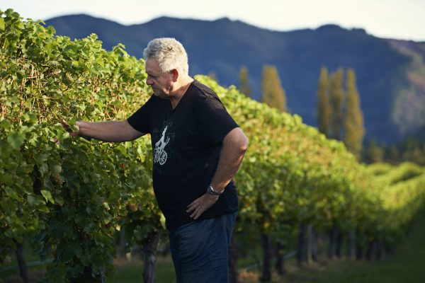 In focus: New Zealand's lighter wine movement
