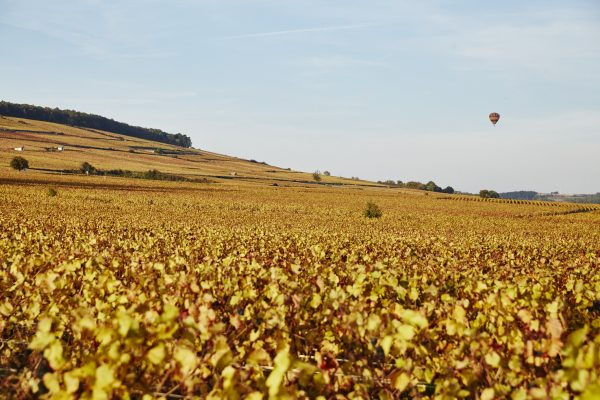 What challenges face Burgundy in the secondary market?