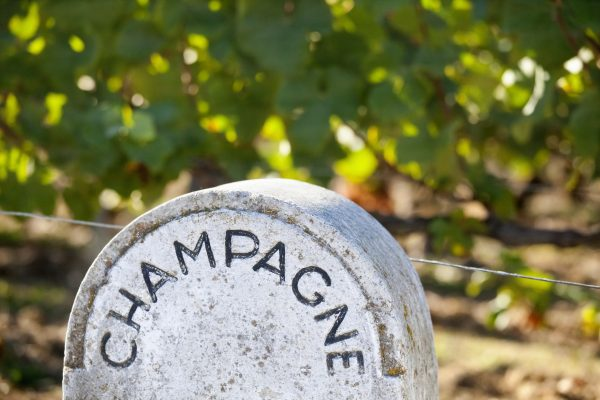Champagne has not yet set yields for 2020's harvest – here's why