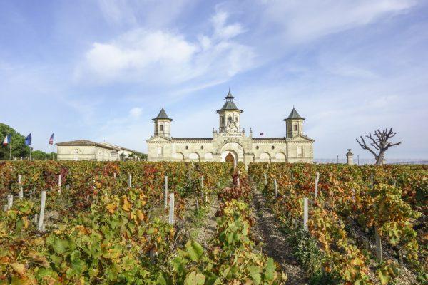 Bordeaux 2019 by appellation: Saint-Estèphe
