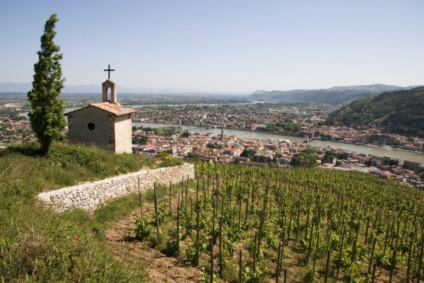Rhône fine wine: Slow and steady wins the race?