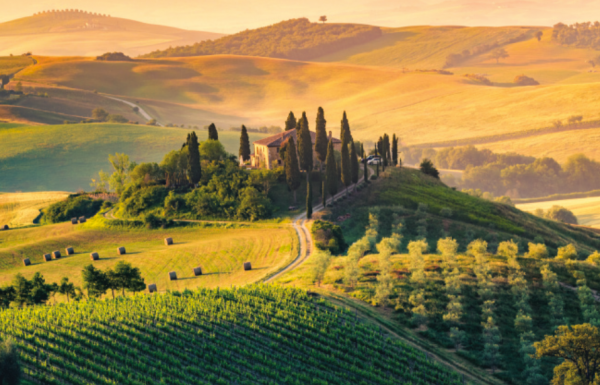 The best wines from The Tuscan Masters 2020