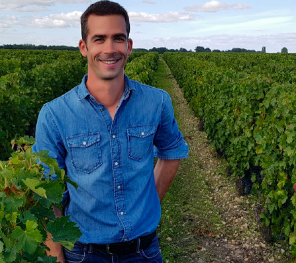 Bordeaux needs to rethink its grape plantings
