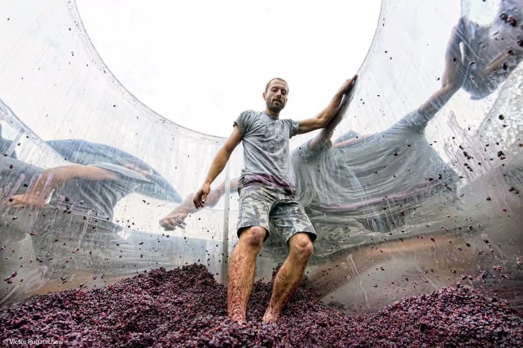 Wine Photographer of the Year