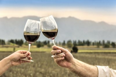 Top 10 Malbec facts to celebrate Malbec World Day