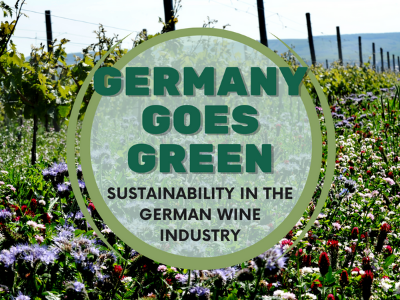 db recommends: Germany Goes Green: Sustainability in the German Wine Industry