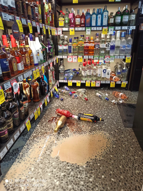 echidna breaks into alcohol store
