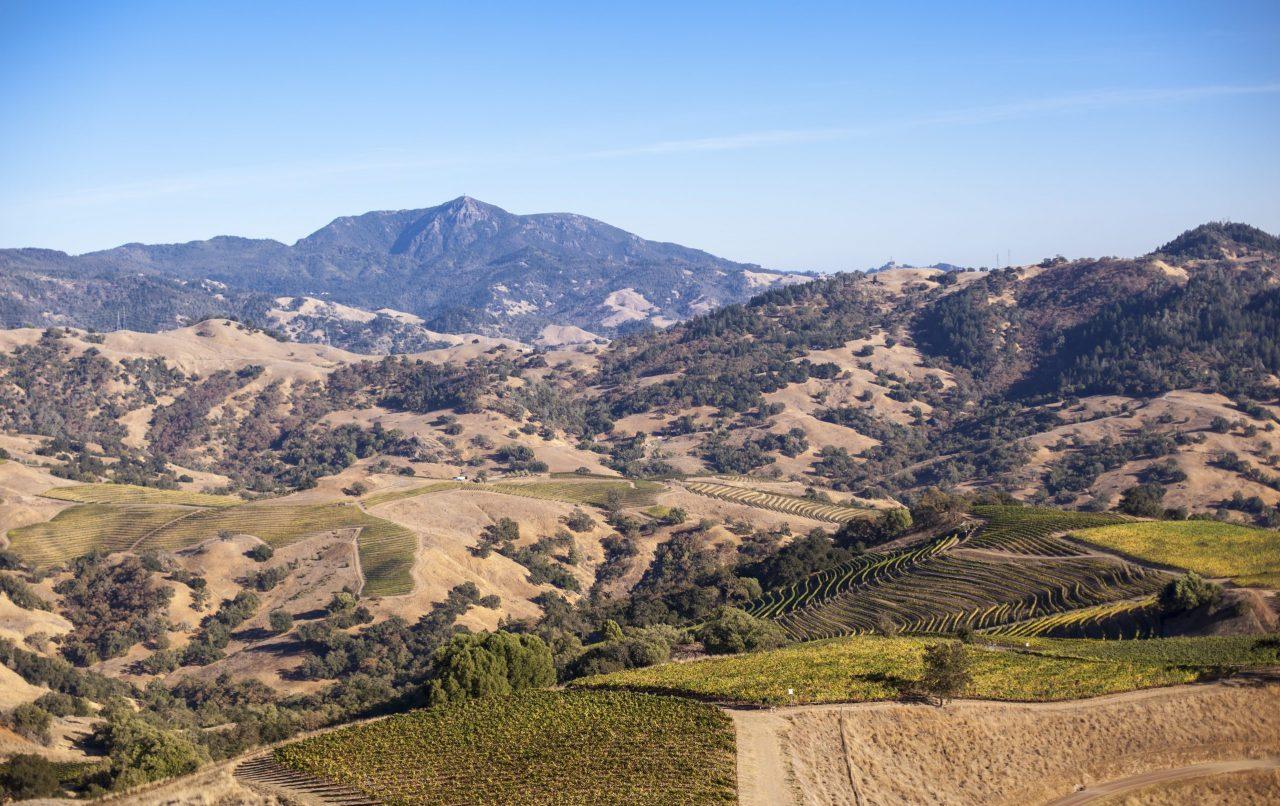 Aperture Cellars acquires Sonoma County's Farrow Ranch