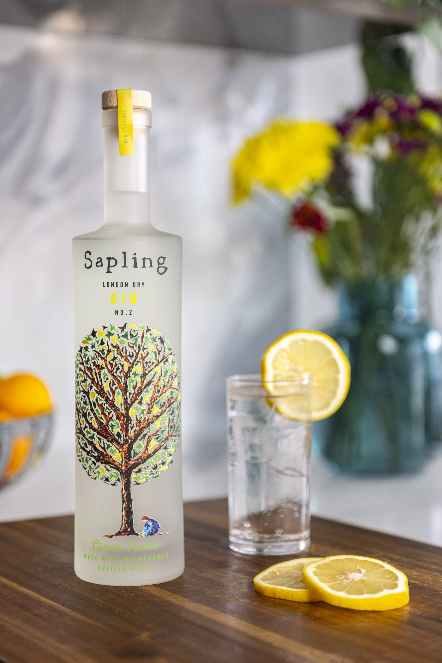 Bottle of sapling gin with gin and tonic glass: Sapling Spirits launches eco-friendly gin at Royal Academy Summer Exhibition