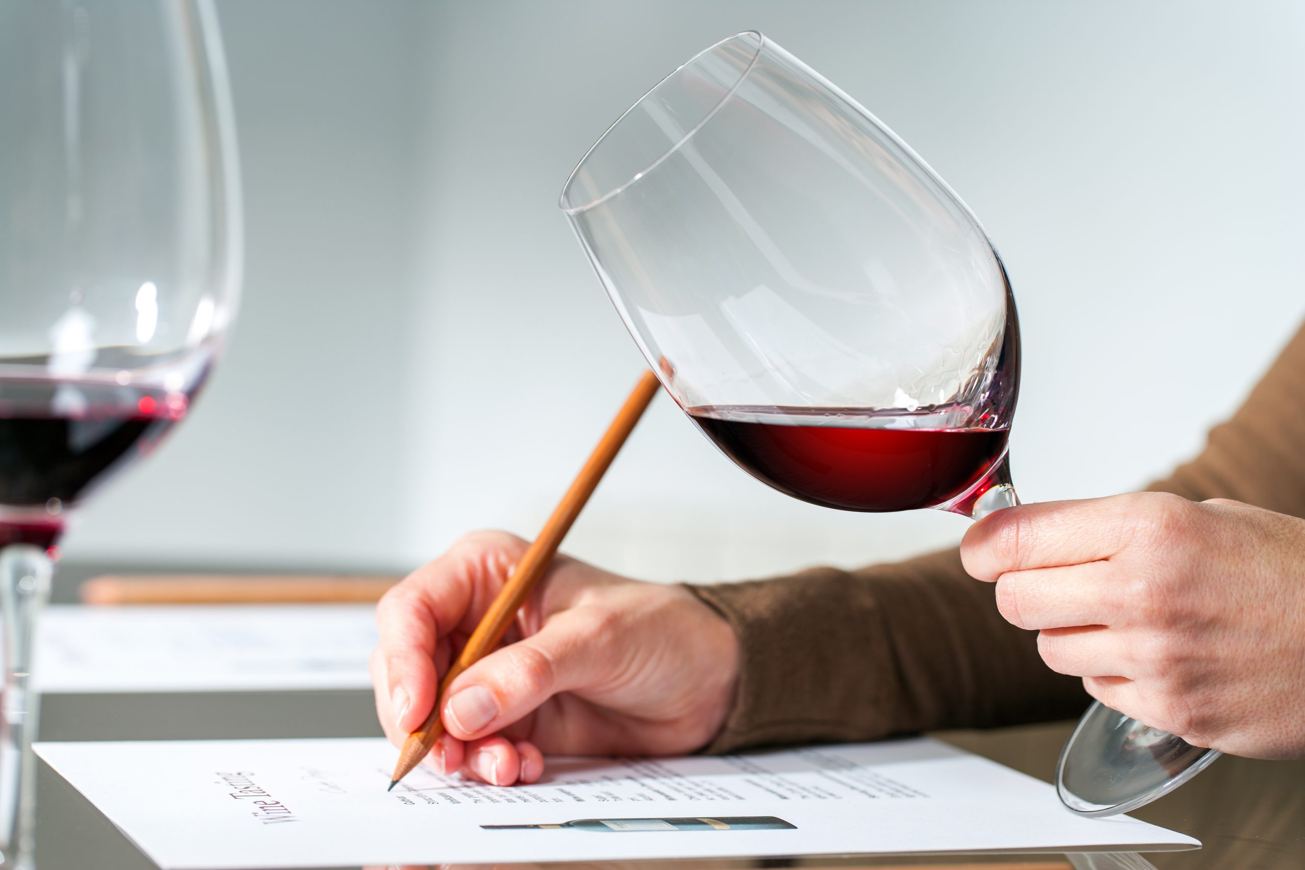 Person taking wine test: WSET sees record number of students in past year