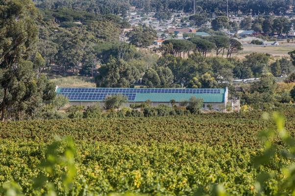 Journey's End Vineyards' solar panels