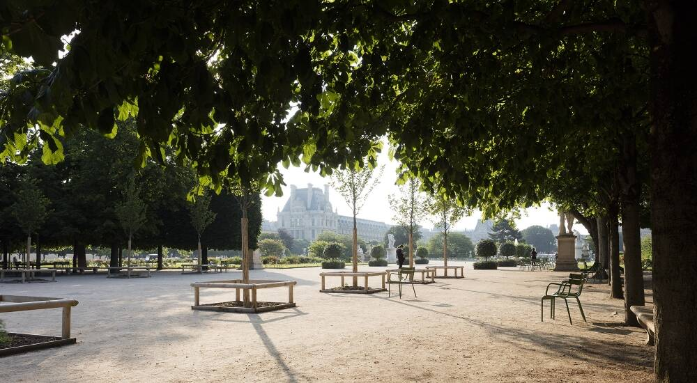 The Jardin des Tuileries: Moet Hennessy supports rewilding initiative at Musee de Louvre