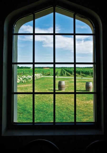 Window-onto-vineyard