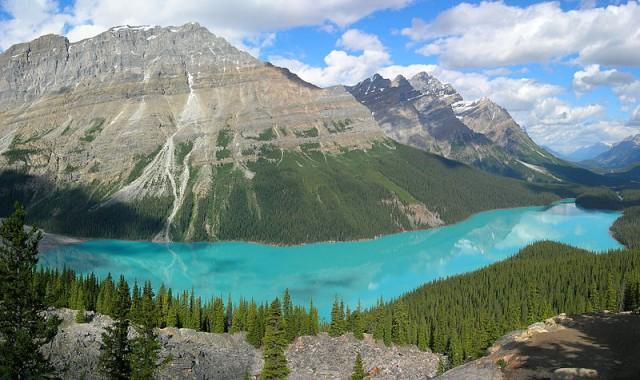 800px-Peyto_Lake-Banff_NP-Canada