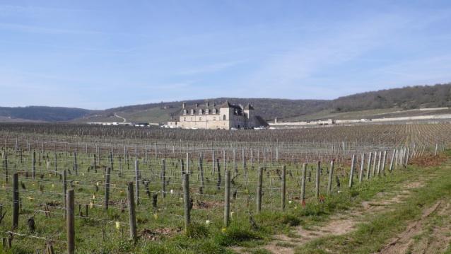 chateau vougeot