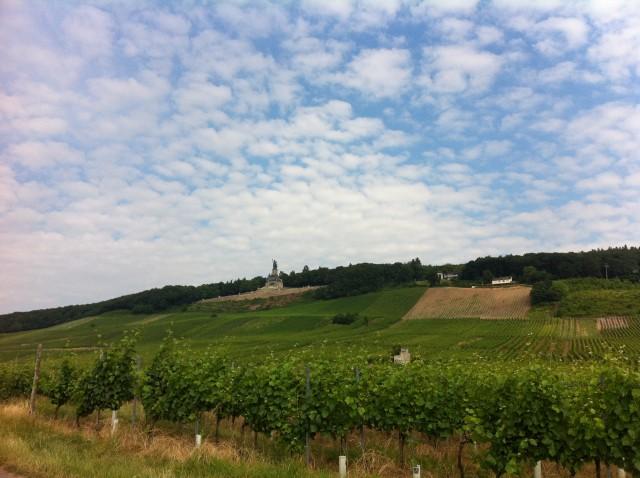 Rheingau vineyards on the banks of the Rhine at Rüdesheim