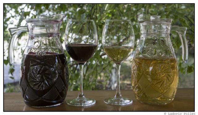 17_Turgen-winery_Btl-1024x593