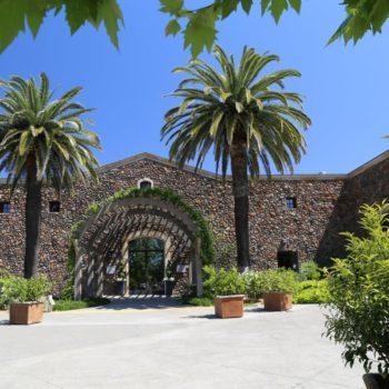 Delicato building winery for 'cult' Napa Cabernet